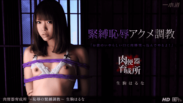 1PONDO 011714_739  Original Drama Collection Haruna Ikoma Jav Uncensored Adult japan porn