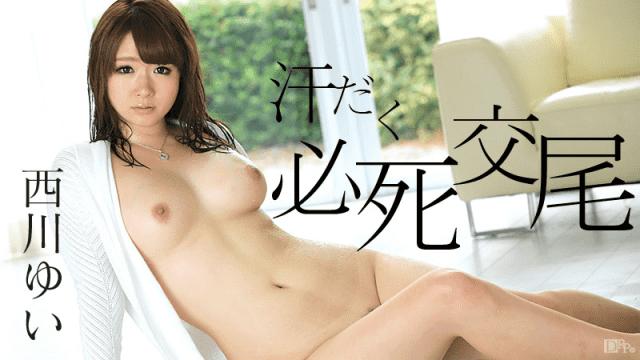 Caribbeancom 082316-239 Yui Nishikawa Sweat frantic copulation nude moan
