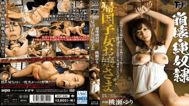 Dogma DDT-530 Yuri Momose Jav sex hd Collapse Rope Slave Returnees Young Lady